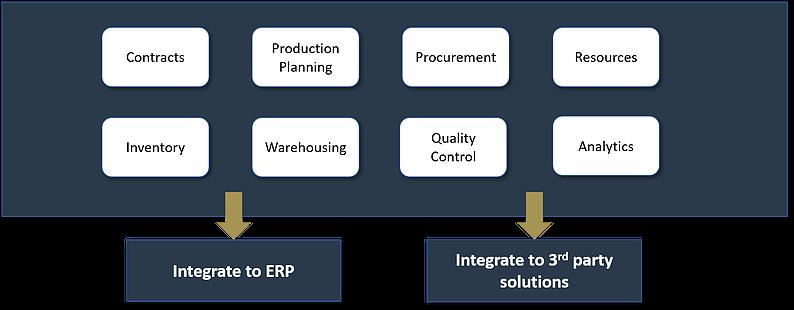 Camara Consulting Workflow